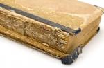 как выглядела древнеиндийская книга